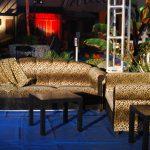 cheetah_couches
